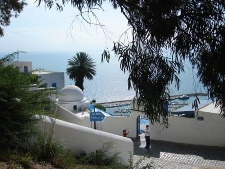 Alles Weiß, Blau und Grün - Künstlerdorf Sidi Bou Saïd