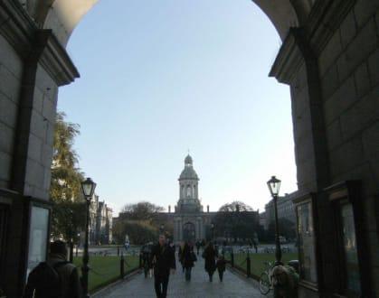 Burg/Palast/Schloss/Ruine - Trinity College