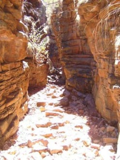 Flinders Ranges - Flinderskette / Flinders Ranges