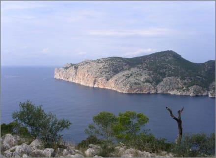 Am Cap Andritxol - Wandern Paguera