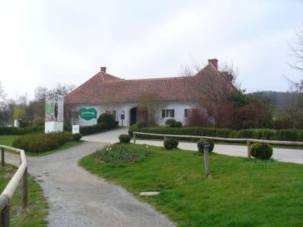 Eingang zum Tierpark - Tierwelt Herberstein