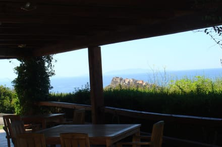 View from Bar -