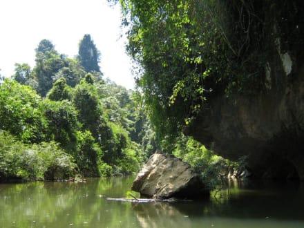 Fahrt im Kajak auf dem Khao Sok River - Khao Sok Nationalpark