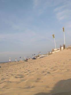 Strand von Zandvoort, - Strand Zandvoort