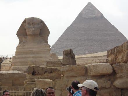 Spinx und Pyramide - Sphinx von Gizeh
