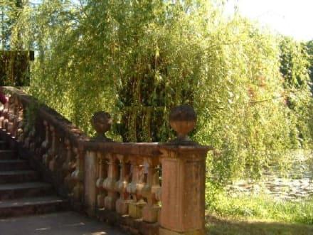 Ein Stück Brücke und ein bissel Teich. - Schloss Wolfsgarten