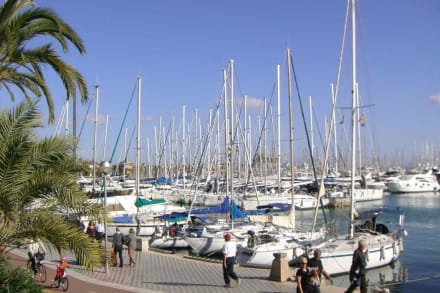 Hafen Palma de Mallorca - Hafen Palma de Mallorca