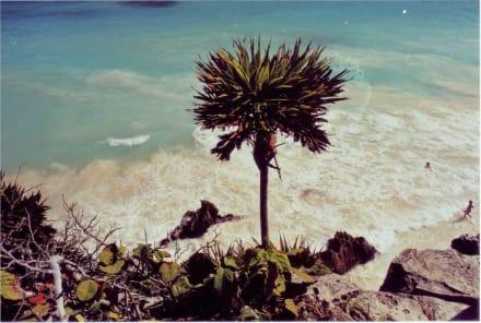 Beach-Festung Tulum - Ruinen von Tulum