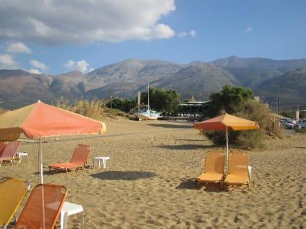 Tropical Beach in Malia - Tropical Beach