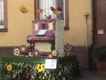 Klavier - Chrysanthema