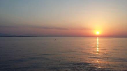 Herrlicher Sonnenuntergang - Delfinschwimmen Yasser