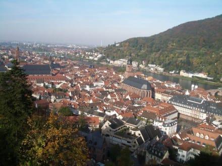 Blick auf Heidelberg & Neckar - Schloss Heidelberg