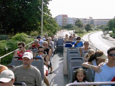 Fahrt im Doppeldecker Bus - Varadero Beach Bus Tour - Doppeldeckerbuslinie
