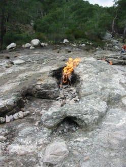 Brennende Steine von Cimera - Ewige Feuer von Chimaera