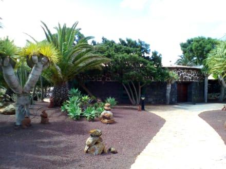 Museo del Queso Majorero in Antigua - Museo del Queso Majorero