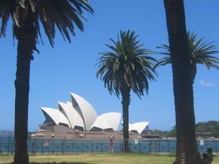 Sydney Opera House - Opera House