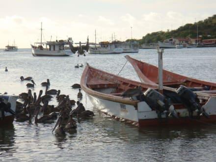 Am Hafen von Juan Griego - Juan Griego
