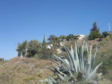 die Finca - Finca Huerta Tropical