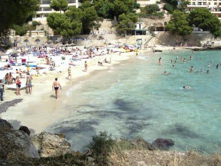 Bucht von Illetas - Strand Illetas/Illetes