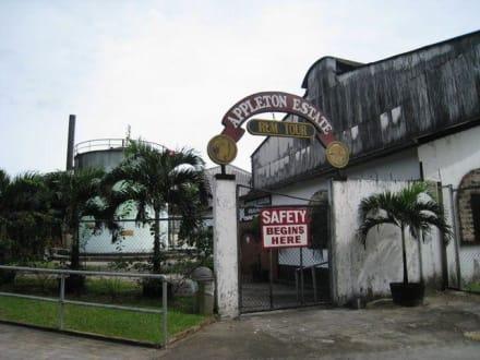 Rum - Appleton Rumfabrik