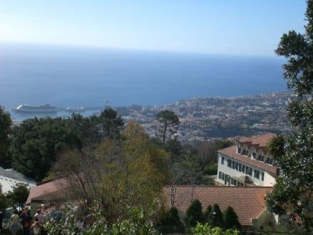 Blick auf die Fantasia im Hafen von Funchal - Hafen Funchal