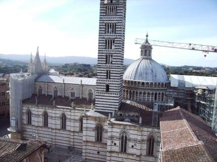 Dom zu Siena - Dom von Siena