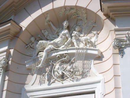 Amalienburg - Schloss Nymphenburg