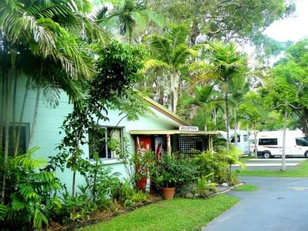 tropic breeze caravan park in port douglas holidaycheck. Black Bedroom Furniture Sets. Home Design Ideas