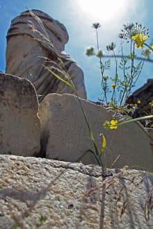 Burg/Palast/Schloss/Ruine - Insel Delos