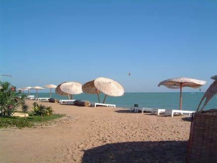 Mangroovy Beach - Mangrovy Beach