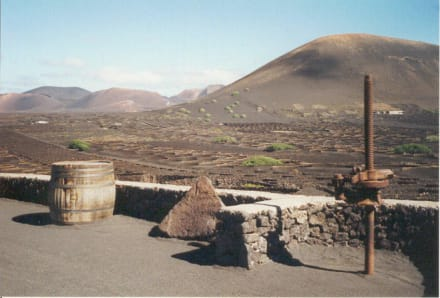 Lanzarote - La Geria - Weinanbaugebiet La Geria