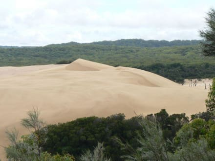 Wanderdünen im Zentrum von Fraser Island - Fraser Island