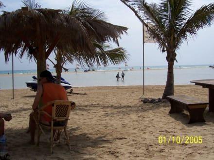 Blick von der Surfschule zu Meer - René Egli Fuerteventura by Meliá - Windsurfing & Kiteboarding Holidays