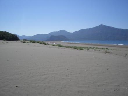 Turtle Beach - Strand Iztuzu