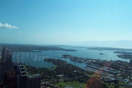 Sydney Hafen - Sydney Tower