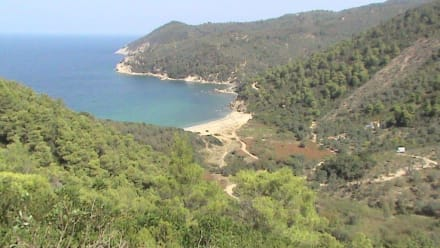 Strand von Mikro Aselinos - Touren & Ausflüge