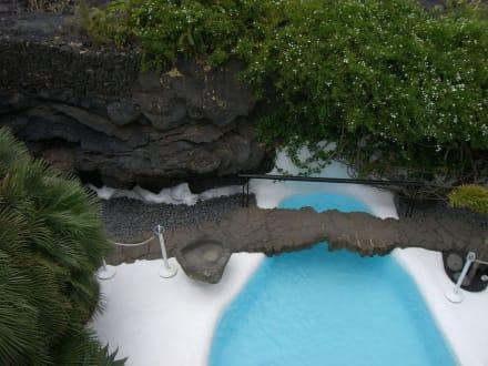 Pool - Fundacion Cesar Manrique