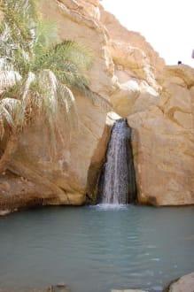 Wasserfall - Bergoase Chebika