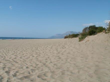 Der Traumstrand von Patara - Strand Patara