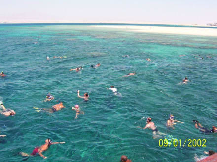 Beim Schnorchelausflug - Tauchen Makadi Bay