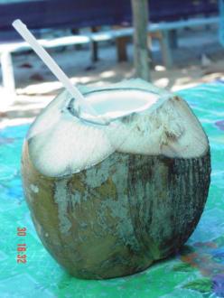 Coco Loco - Bacardi Insel - Isla Cayo Levantado