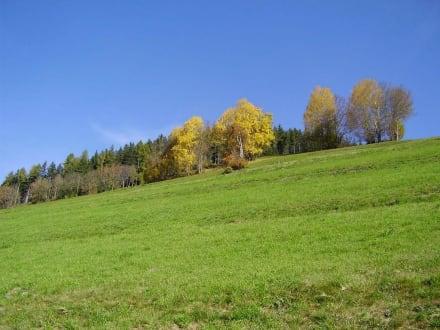 Herbstliche Farben - Wandern St. Vigil in Enneberg