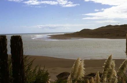 Landschaft an der Whale Bay von Raglan - Strand Raglan & the Whale Bay