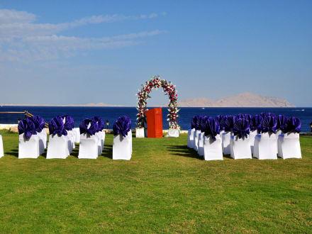 Wedding on The Beach -