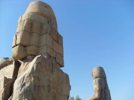 Immer beeindruckend - Kolosse von Memnon