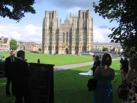 Kathedrale als Kulisse für Hochzeitspaare - Wells