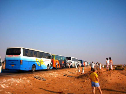Mit den Reisebussen nach Kairo - Transport