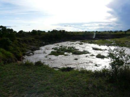 Wasserloch im Halbdunkeln - Masai Mara Safari