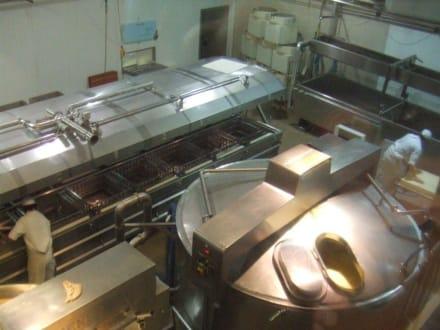 Blick in die Produktion - Sennerei Zillertal