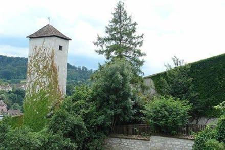 Burg/Palast/Schloss/Ruine - Munot